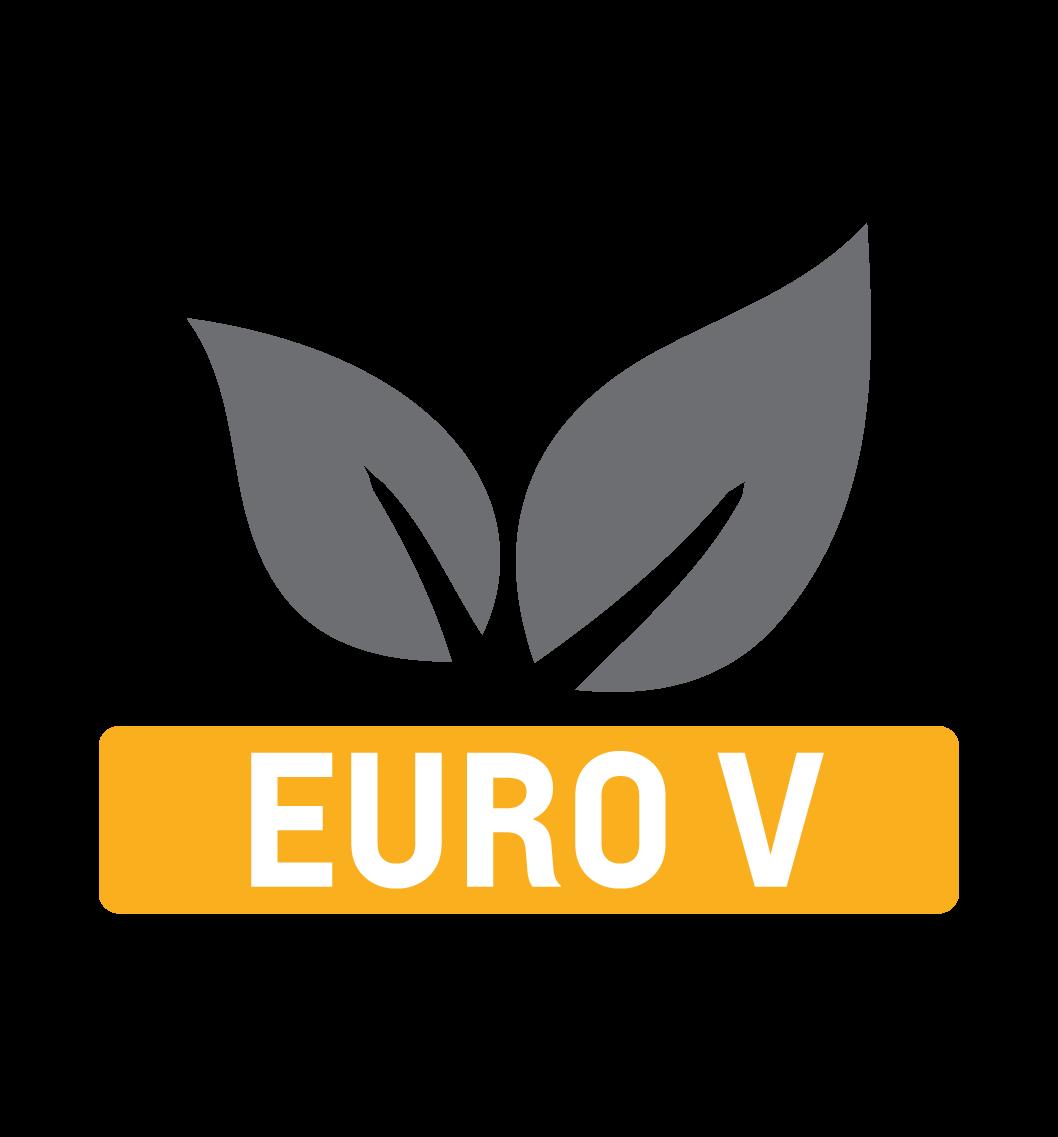 logo euro v