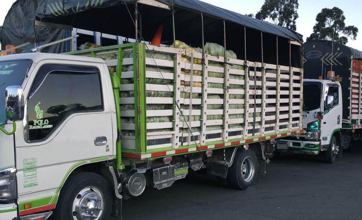 Transportadores de alimento en tiempo de crisis